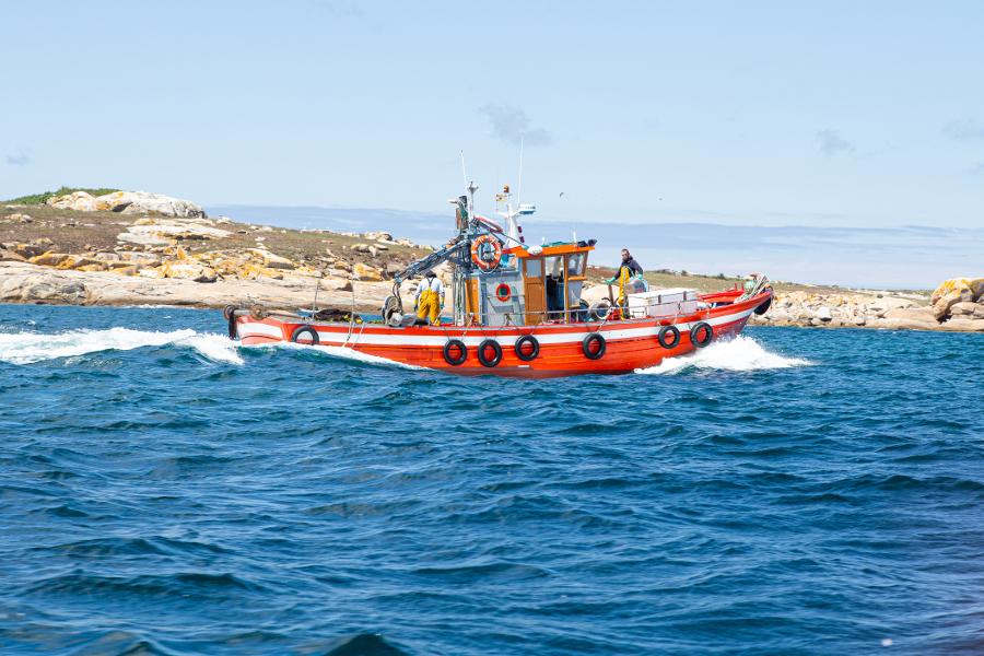 Barco en augas arousás (Foto: Arxina)